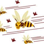 ハチに刺された時の対処法とは|正しい応急処置の方法と手順